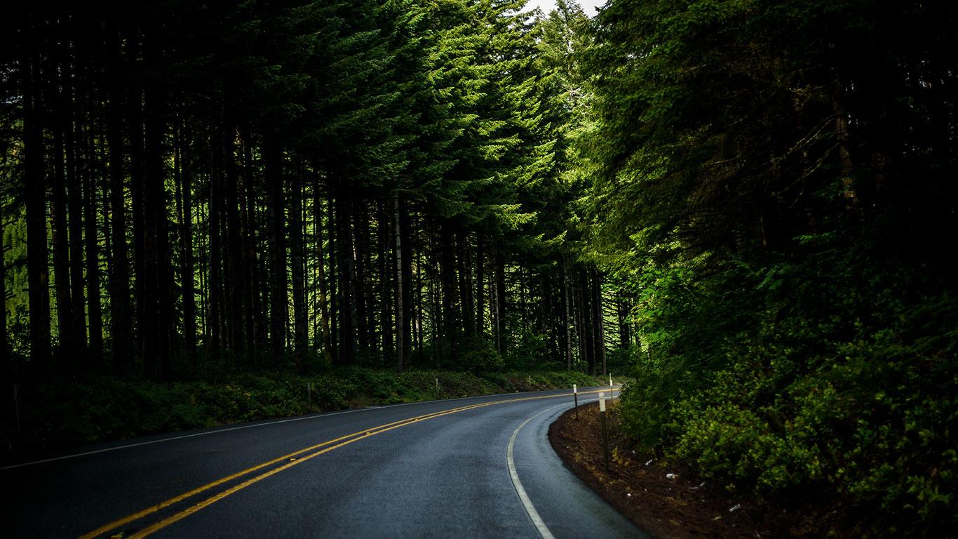 Oregon_Coast_Highway_101_Bonsai_Mirai