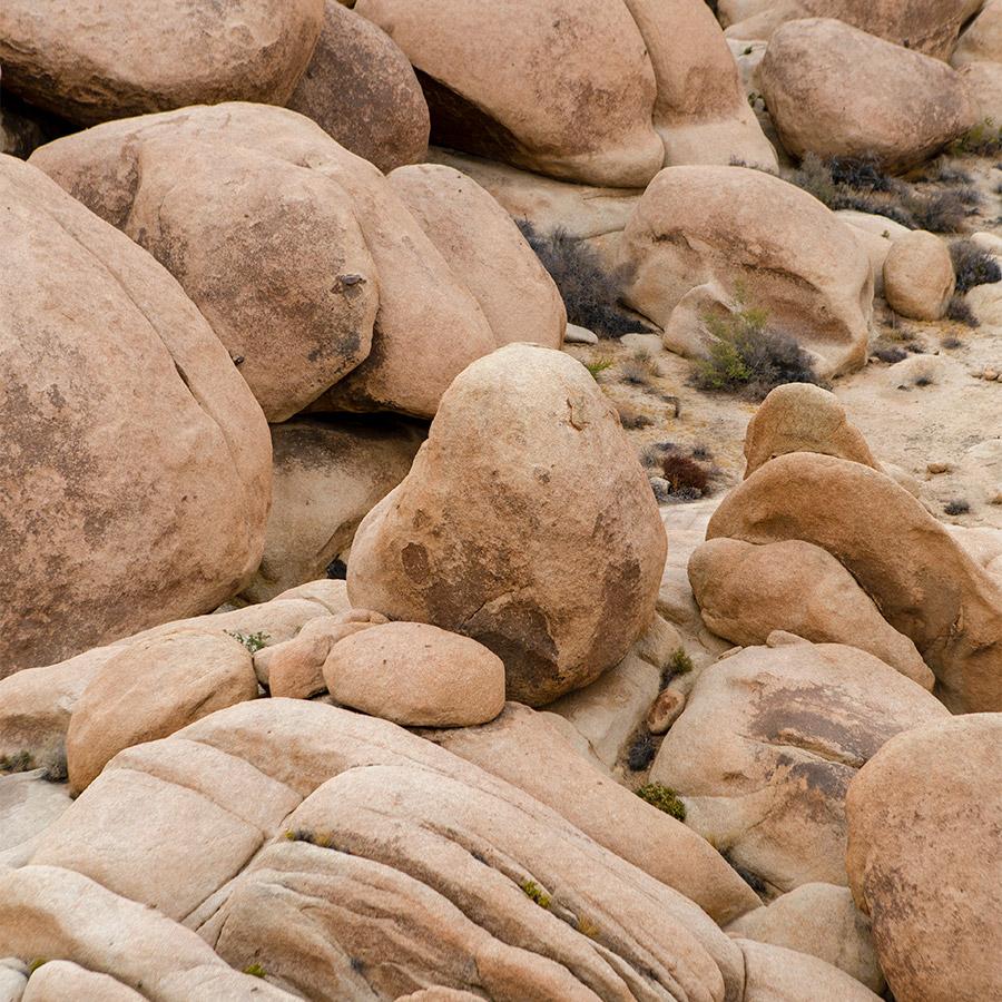 10joshua_tree_geology_by-arthur-hitchcock