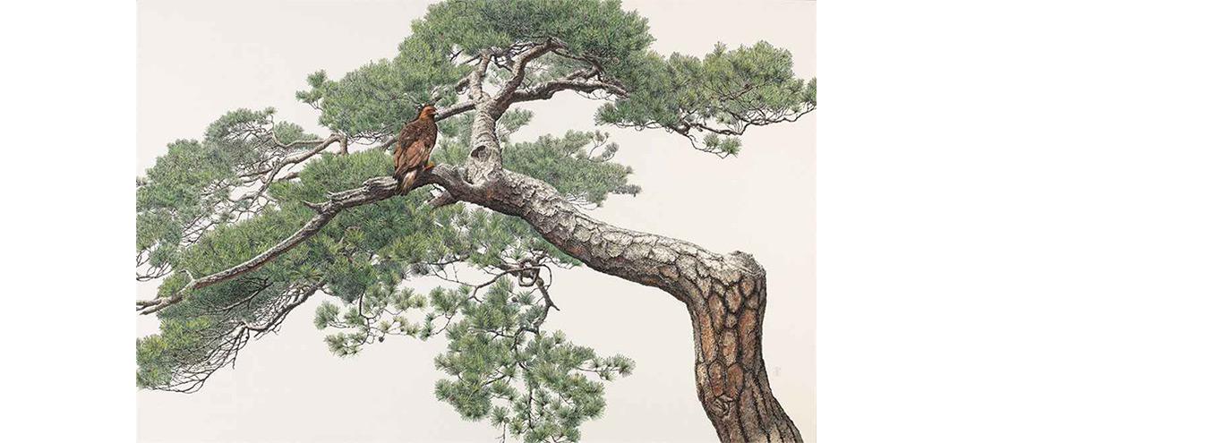 choi yeong tree
