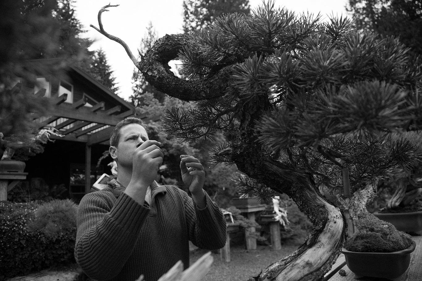 ryan_neil_bonsai