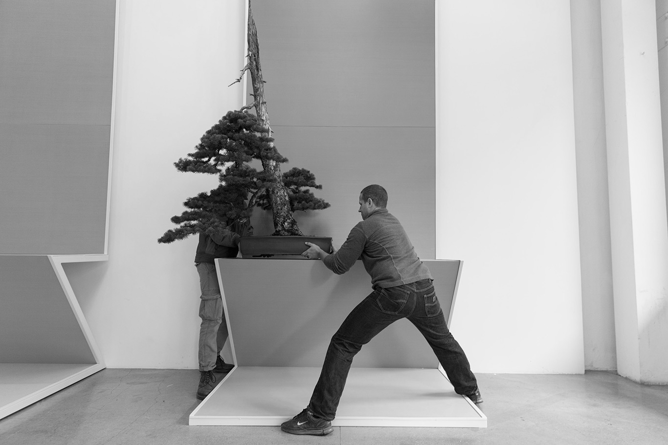wieden_kennedy_spectrum_bonsai_mirai_ryan_neil