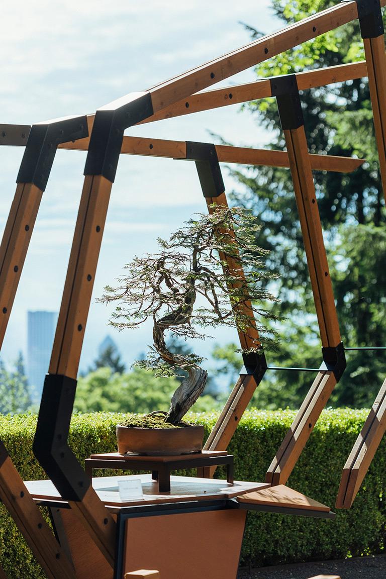 portland_japanese_gardens_unbridled_ryan_neil_bonsai