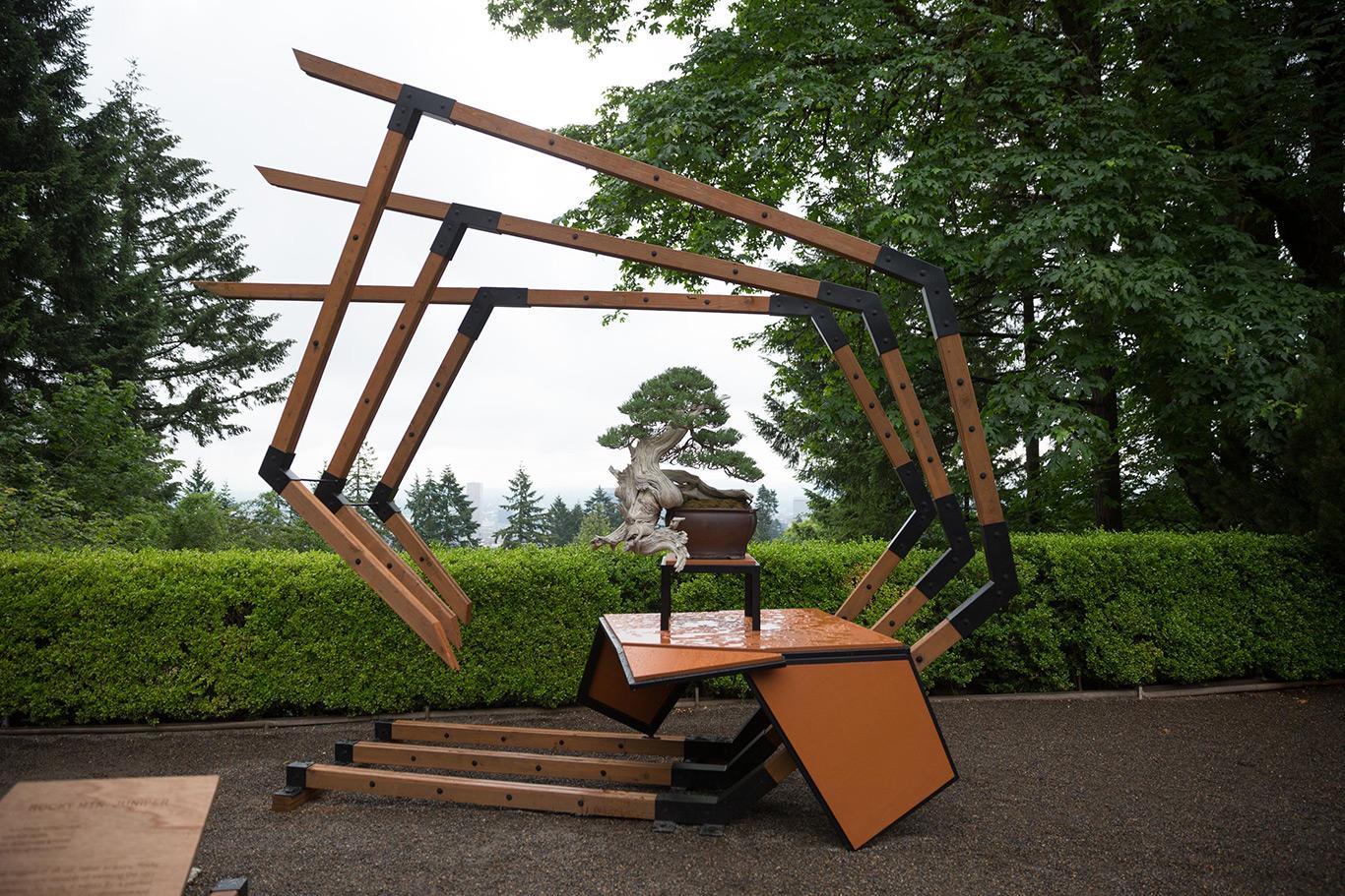 portland_japanese_gardens_unbridled_ryan_neil_juniper_bonsai