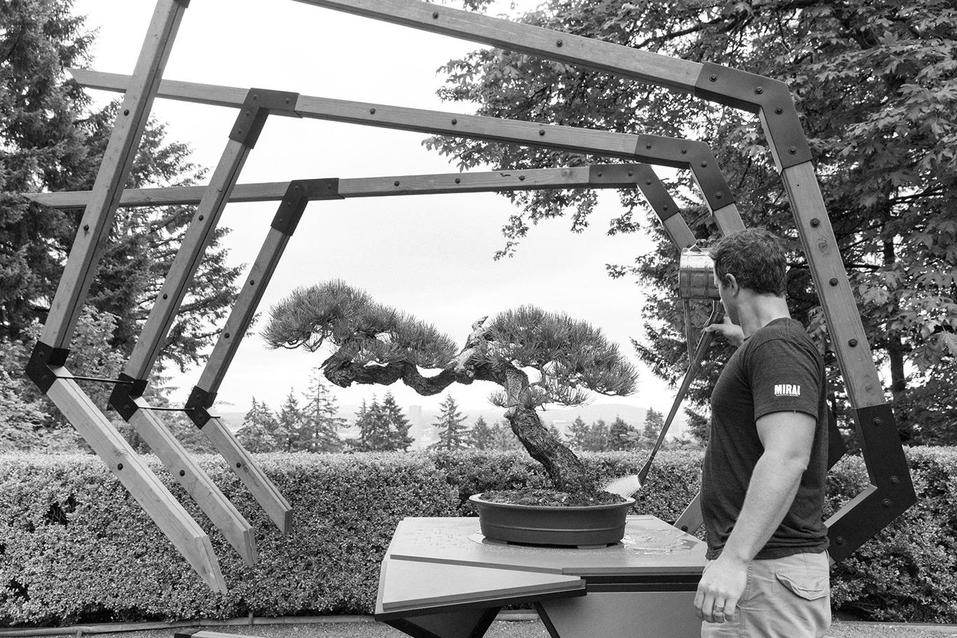 unbridled_ryan_neil_bonsai_japanese_gardens