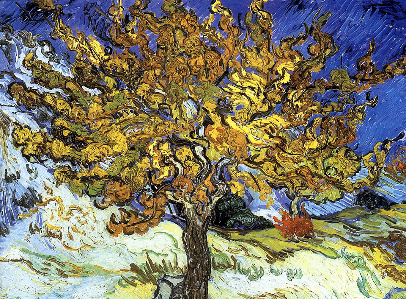 van gogh mulberry tree